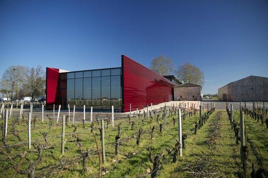chateau la dominique picture of la terrasse rouge saint emilion tripadvisor. Black Bedroom Furniture Sets. Home Design Ideas