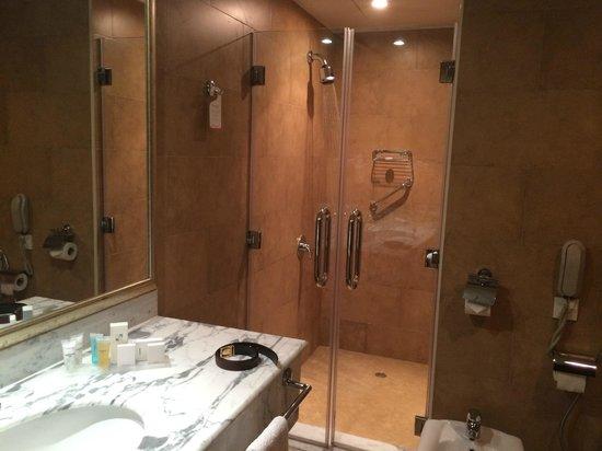 Swiss-Belhotel Doha: Bathroom and Shower area