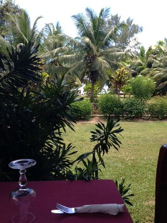 Le Chevalier Bay Restaurant: la vista dal tavolo, dietro le palme il mare