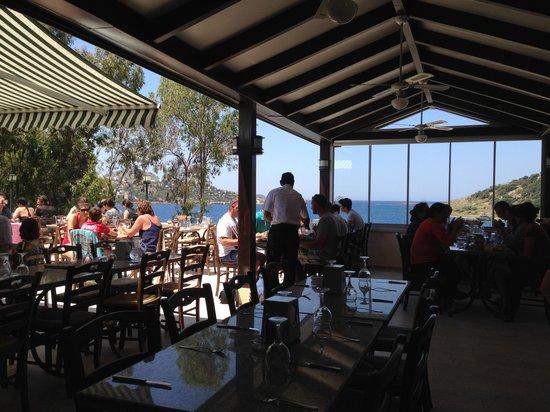 Cactus Mirage Family Club: Le restaurant