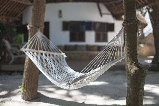 Kinondo Kwetu: Hammock outside cottage