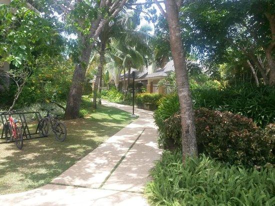 Amorita Resort: garden