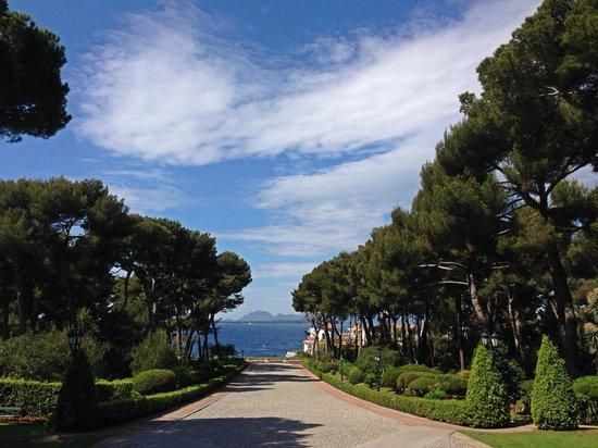 Hotel du Cap Eden-Roc : Территория
