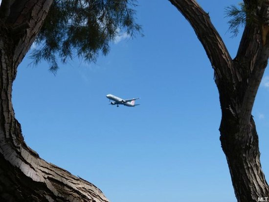 Aegean Plaza Hotel: Airplane ready to land at the airport that is 10 minutes away from the hotel