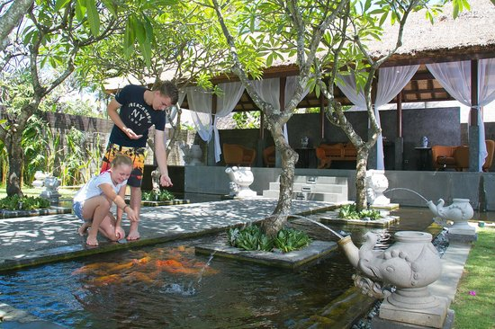 Legian Beach Hotel: Fish Feeding at garden gazebo