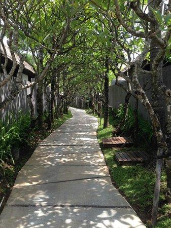 The Kayana Bali : L'accès aux villas