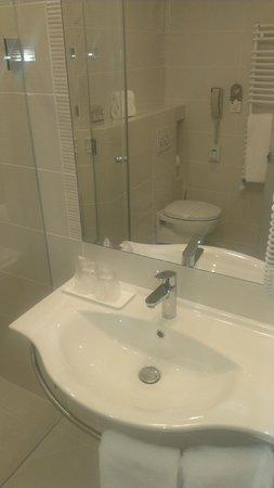 Hotel Coroana De Aur: Bathroom