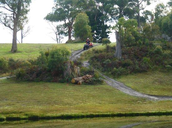 Kookaburra Ridge Quad Bike Tours - Had a ball