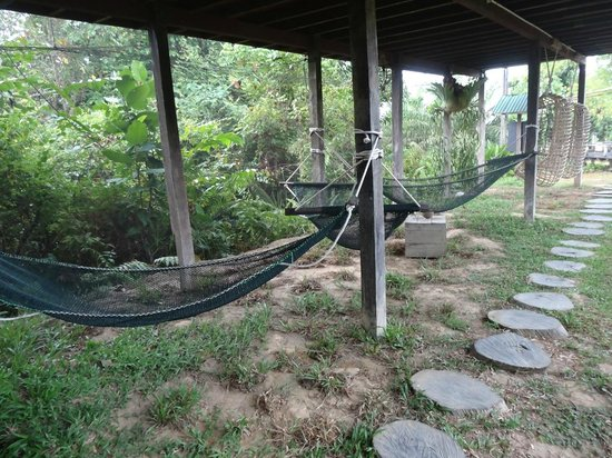Paganakan Dii Tropical Retreat: hammocks under the dorms