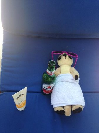 Villa Bugis : Meerkat Relaxing at Villa Saphir