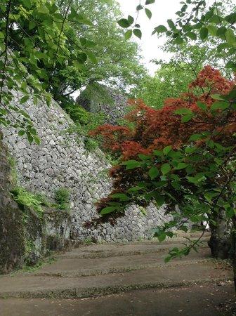 Ruins of Oka Castle: 城趾へむかう途中