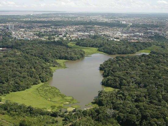 Parque Estadual do Utinga