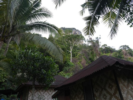 Railay Garden View Resort: view of surrounding cliff
