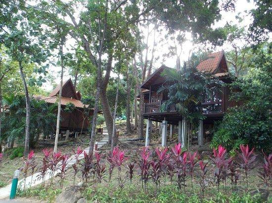 Berjaya Langkawi Resort - Malaysia: Rain Forest Chalets