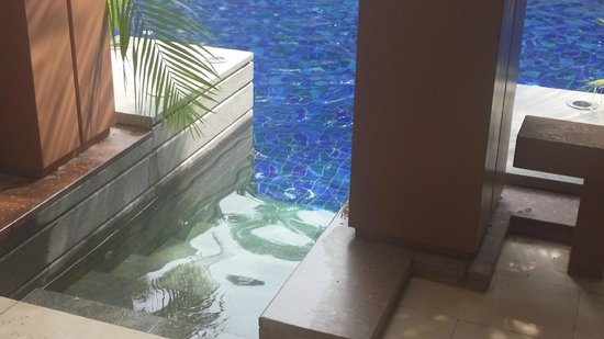Resorts World Sentosa - Equarius Hotel: A swimming pool in front of your door step. How cool!