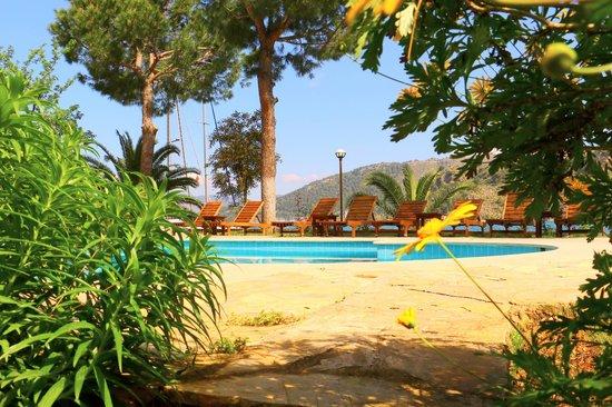 Cennet Marine Yacht Club: Pool