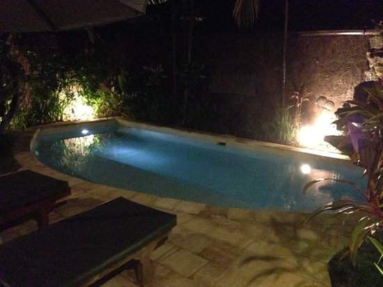Dyana Villas : The private pool