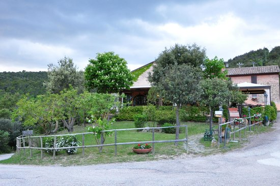 Country House Torre Burchio : Immersi nel verde