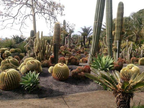Giardini Ravino: 15