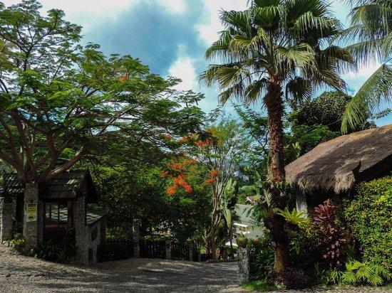 Boomerang Village Resort: Grounds