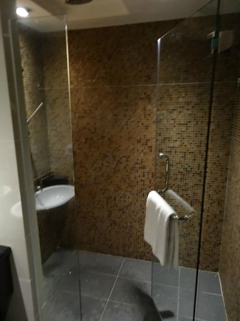 Hotel Sixty3: walk-in shower