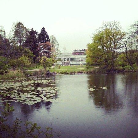 Botanical Gardens (Botanisk Have) : пруд