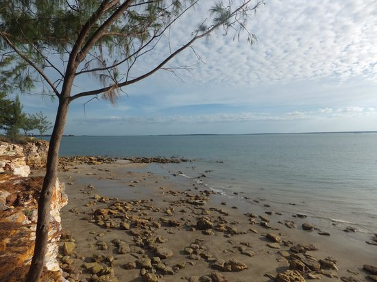 East Point Reserve : View 1