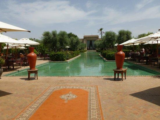 Club Med Marrakech La Palmeraie : La Palmeraie
