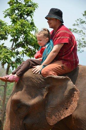 Patara Elephant Farm - Private Tours : Loving life
