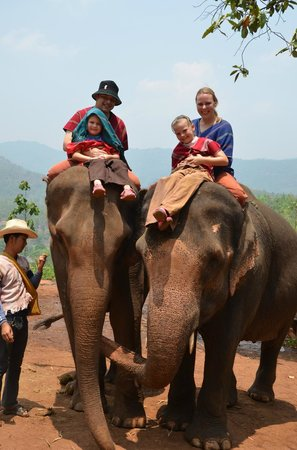 Patara Elephant Farm - Private Tours : What a great day