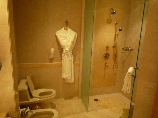 Emirates Palace: The Bathroom Shower Area