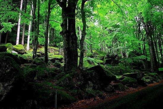 Riserva Naturale Val di Mello : Verso i bagni