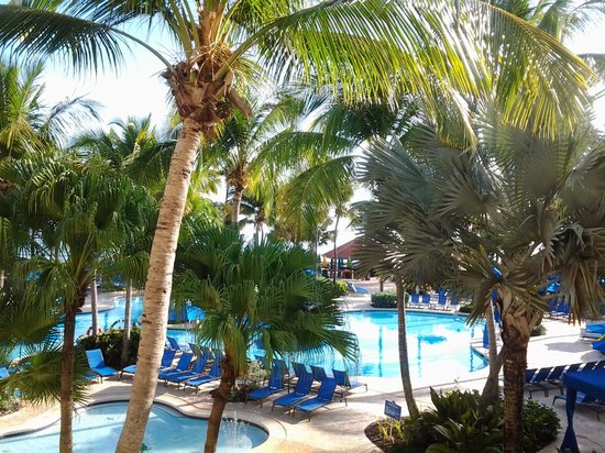 Wyndham Grand Rio Mar Beach Resort & Spa: view from our patio. awesome!