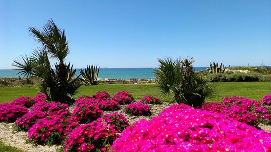 Praia D'El Rey Marriott Golf & Beach Resort: Hotel´s grounds