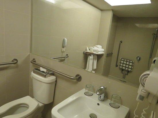 Radisson Hotel Puerto Varas: shower