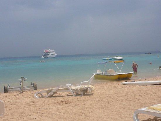 Faraana Reef Resort : plaża