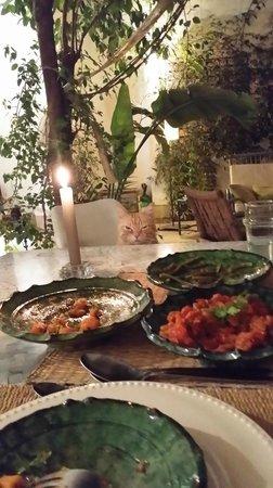 Riad Dar Binebine : Es gato nos acompañó durante la cena jajaja