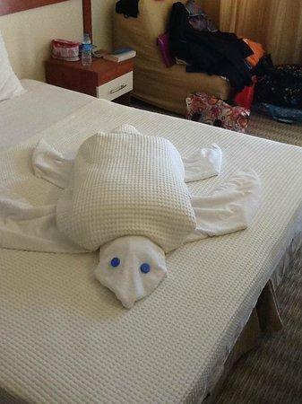 Golden Moon Hotel: turtle