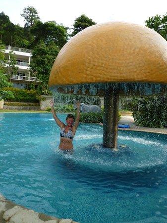 Chang Park Resort & Spa: Бассейн отеля  Sea View