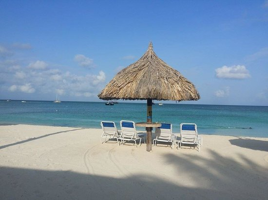 Aruba Marriott Resort & Stellaris Casino: Our Palapas