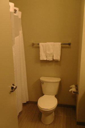 Holiday Inn Express Hotel & Suites Fort Walton Beach Northwest : Bad
