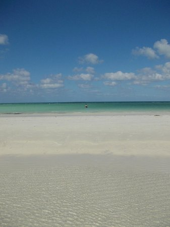 Sol Cayo Guillermo: Low tide, we could walk forever!