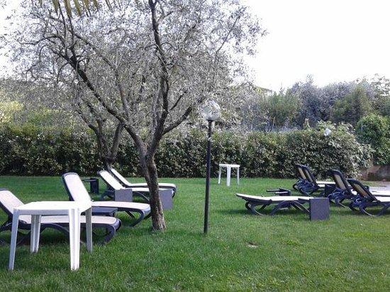 Hotel Ristorante Panoramica : Piscina