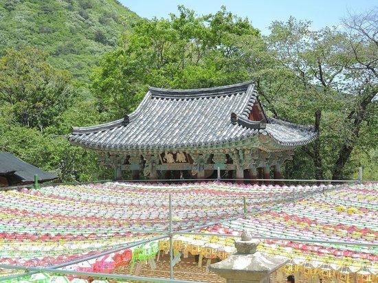 Beomeosa-Tempel: крыша павильона