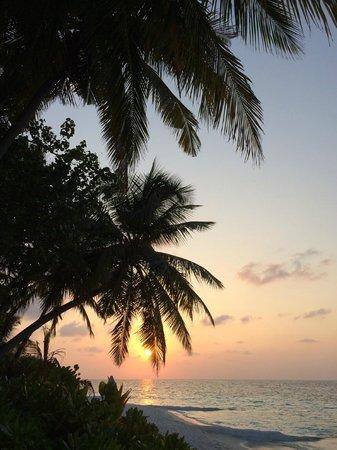 Angsana Ihuru : sunset