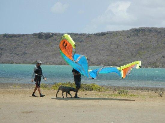 KitingCuracao : Kite lesson #2