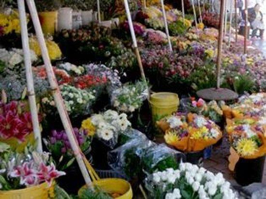 Wanderlust - Cape Town on Foot Walking Tour: Flower Sellers in Adderley Street
