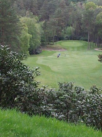 Old Thorns Manor Hotel & Golf Course : golf heaven