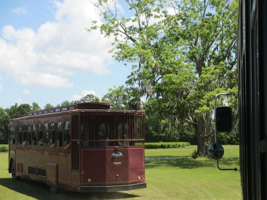 Charleston Tea Plantation : The Trolley