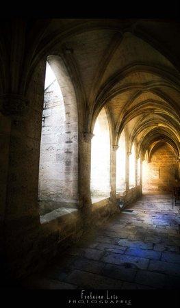 Chartreuse du Val de Bénédiction : intérieur